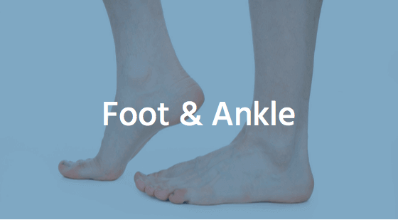 foot ankle